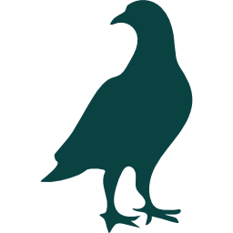 002-bird