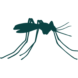 003-mosquito