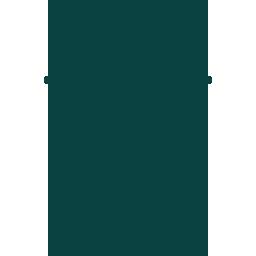 004-wasp