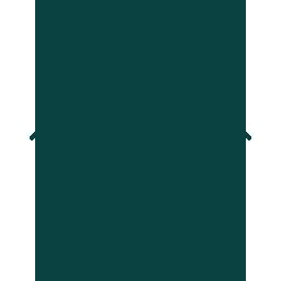 007-bed-bug